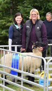First placed interbreed ewe lamb, Hawarden Show 2018
