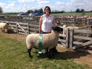 190/09 Champion Meat breed sheep of Mayfield A&P Show